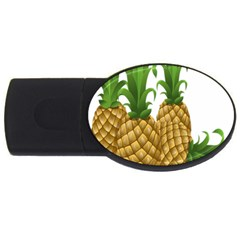 Pineapples Tropical Fruits Foods Usb Flash Drive Oval (4 Gb) by Nexatart