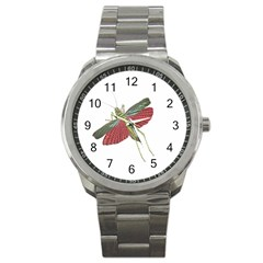 Grasshopper Insect Animal Isolated Sport Metal Watch