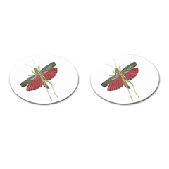Grasshopper Insect Animal Isolated Cufflinks (oval) by Nexatart