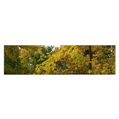 Vermont Tree In Autumn Satin Scarf (oblong)