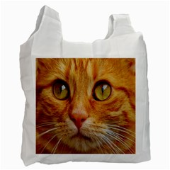 Cat Red Cute Mackerel Tiger Sweet Recycle Bag (two Side)  by Nexatart