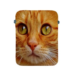 Cat Red Cute Mackerel Tiger Sweet Apple Ipad 2/3/4 Protective Soft Cases by Nexatart