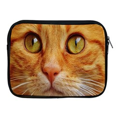 Cat Red Cute Mackerel Tiger Sweet Apple Ipad 2/3/4 Zipper Cases by Nexatart