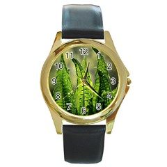 Fern Ferns Green Nature Foliage Round Gold Metal Watch by Nexatart