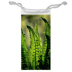 Fern Ferns Green Nature Foliage Jewelry Bag by Nexatart