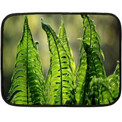 Fern Ferns Green Nature Foliage Double Sided Fleece Blanket (mini)  by Nexatart