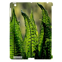 Fern Ferns Green Nature Foliage Apple Ipad 3/4 Hardshell Case (compatible With Smart Cover)
