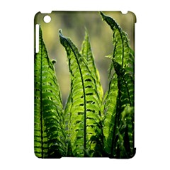 Fern Ferns Green Nature Foliage Apple Ipad Mini Hardshell Case (compatible With Smart Cover) by Nexatart