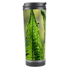 Fern Ferns Green Nature Foliage Travel Tumbler by Nexatart