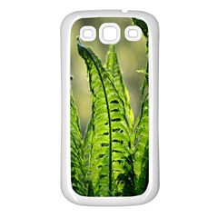 Fern Ferns Green Nature Foliage Samsung Galaxy S3 Back Case (white) by Nexatart