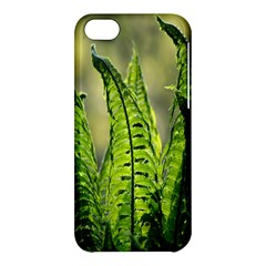 Fern Ferns Green Nature Foliage Apple Iphone 5c Hardshell Case by Nexatart