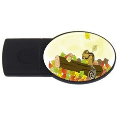 Squirrel Usb Flash Drive Oval (2 Gb) by Nexatart