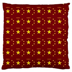 Chinese New Year Pattern Large Flano Cushion Case (One Side)