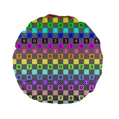 Test Number Color Rainbow Standard 15  Premium Round Cushions