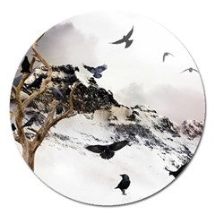 Birds Crows Black Ravens Wing Magnet 5  (round)