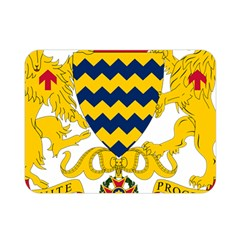 Coat Of Arms Of Chad Double Sided Flano Blanket (mini)  by abbeyz71