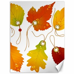 Vector Beautiful Maple Leaf Canvas 36  X 48   by Nexatart