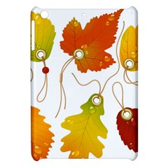 Vector Beautiful Maple Leaf Apple Ipad Mini Hardshell Case by Nexatart