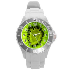 Kiwi Fruit Slices Cut Macro Green Round Plastic Sport Watch (l) by Alisyart