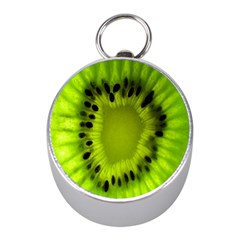 Kiwi Fruit Slices Cut Macro Green Mini Silver Compasses by Alisyart