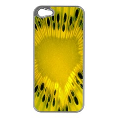 Kiwi Fruit Slices Cut Macro Green Yellow Apple Iphone 5 Case (silver) by Alisyart