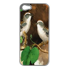 Backdrop Colorful Bird Decoration Apple Iphone 5 Case (silver)