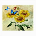 Backdrop Colorful Butterfly Small Glasses Cloth Front