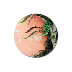 Background Stone Wall Pink Tree Magnet 3  (round) by Nexatart
