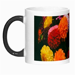 Beautifull Flowers Morph Mugs