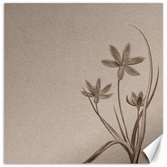 Background Vintage Drawing Sepia Canvas 20  X 20   by Nexatart