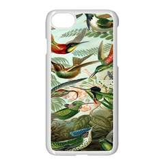Beautiful Bird Apple Iphone 7 Seamless Case (white) by Nexatart