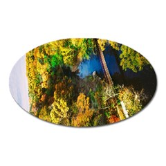 Bridge River Forest Trees Autumn Oval Magnet by Nexatart
