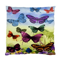 Butterfly Painting Art Graphic Standard Cushion Case (one Side)