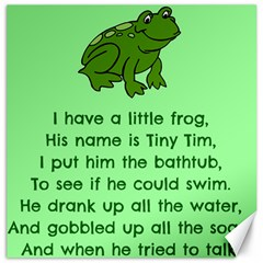 Little Frog Poem Canvas 20  X 20   by athenastemple