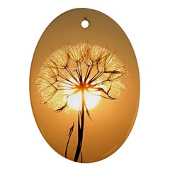 Dandelion Sun Dew Water Plants Oval Ornament (two Sides)