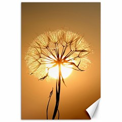 Dandelion Sun Dew Water Plants Canvas 20  X 30