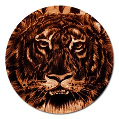 Eye Of The Tiger Magnet 5  (round)