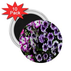 Flowers Blossom Bloom Plant Nature 2 25  Magnets (10 Pack)  by Nexatart