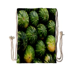 Food Summer Pattern Green Watermelon Drawstring Bag (small) by Nexatart
