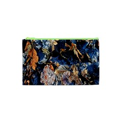Frost Leaves Winter Park Morning Cosmetic Bag (xs) by Nexatart