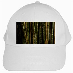 Green And Brown Bamboo Trees White Cap by Nexatart