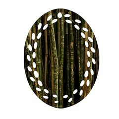 Green And Brown Bamboo Trees Ornament (oval Filigree)