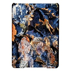 Frost Leaves Winter Park Morning Ipad Air Hardshell Cases by Nexatart