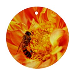 Honey Bee Takes Nectar Round Ornament (two Sides)