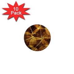 Leaves Autumn Texture Brown 1  Mini Magnet (10 Pack)  by Nexatart