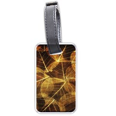 Leaves Autumn Texture Brown Luggage Tags (one Side)  by Nexatart