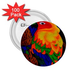 Parakeet Colorful Bird Animal 2 25  Buttons (100 Pack)  by Nexatart
