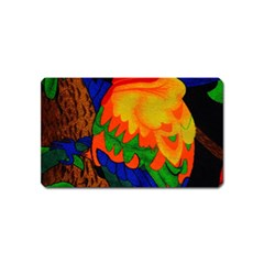 Parakeet Colorful Bird Animal Magnet (name Card)