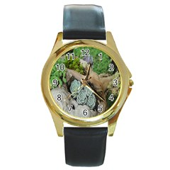 Plant Succulent Plants Flower Wood Round Gold Metal Watch by Nexatart