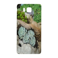 Plant Succulent Plants Flower Wood Samsung Galaxy Alpha Hardshell Back Case by Nexatart